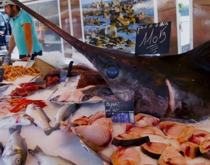 bancone con pesce spada in primo piano